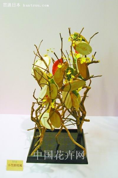 树木的表情 日本龙生派2010年秋插花展作品赏析
