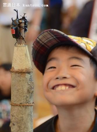 """日本山形县中山町的综合体育馆举行""""第24届全国独角仙相扑大会""""。"""