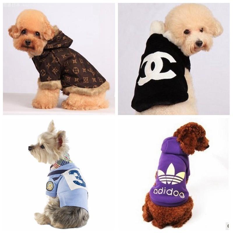 狗狗穿衣服很可爱