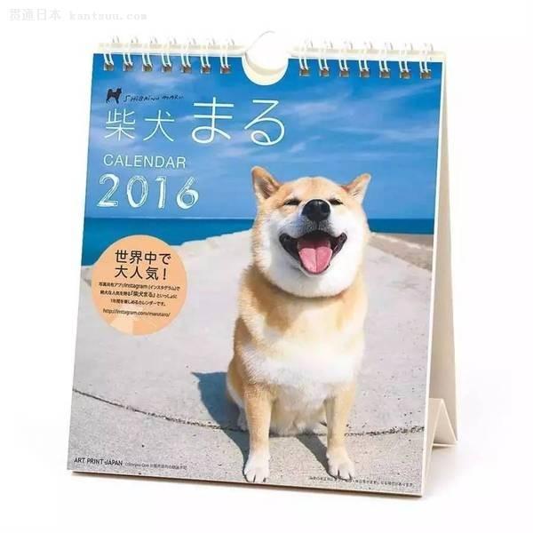 什么!日本的第一表情帝是这只柴犬图片