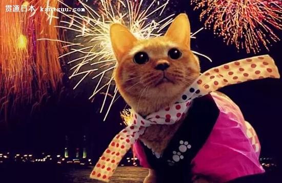 迷人的日本烟火大会 今年又要惊艳天空啦12