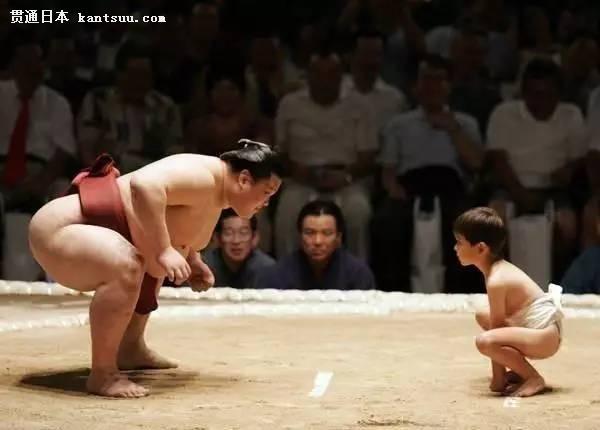 日本众多美女为何情愿嫁给巨肥相扑运动员?